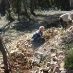 Langlade 2019: dégagement de la base des murets